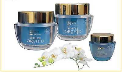 CIEN-White-Orchid-